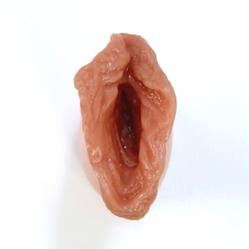 Herausnehmbar Vagina